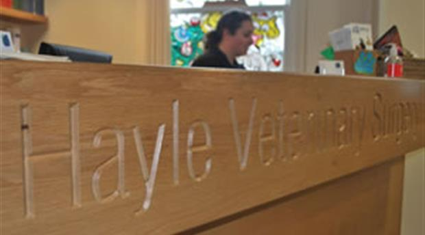 Hayle Veterinary Surgery Picture 1