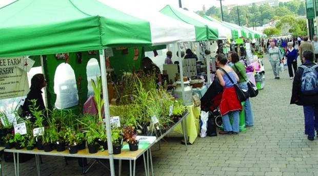 Falmouth Farmers Market Picture 1